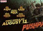 Pushpa Movie Fahadh Faasil Look